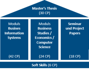 Structure of the Master's programme